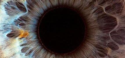 人類的眼睛超特寫