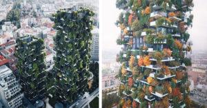 城市中「垂直森林」奇景!四季不用開冷氣、暖氣:與1600種生物和平共處