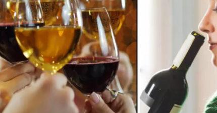 喝酒又有錢拿!酒廠徵「品酒人員」 徵選方式:秀出你的「酒鬼證據」
